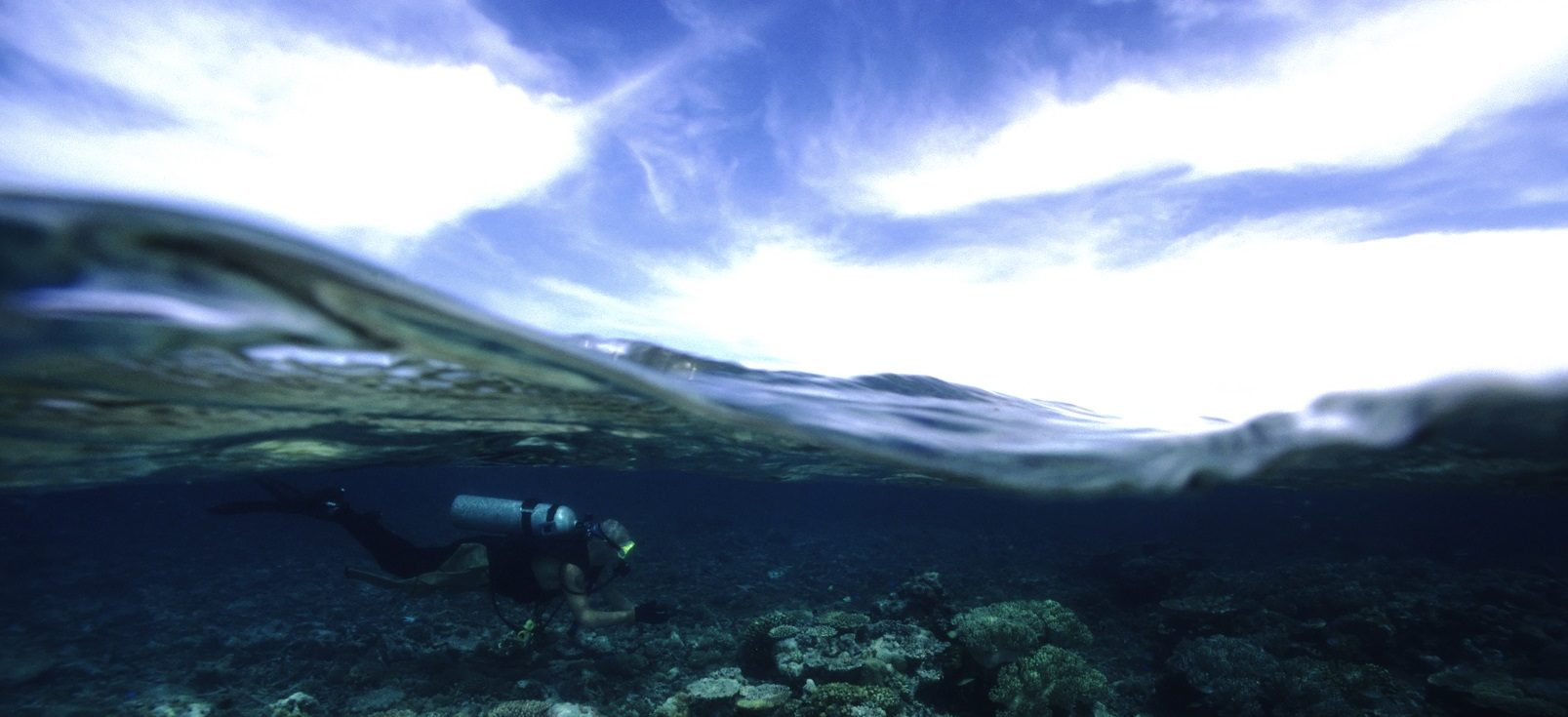 Above and below action shot of an underwater diver.
